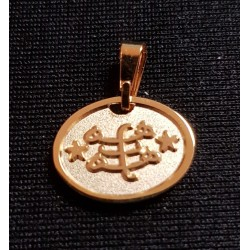 Pendentif plaqué or 'yá bahá'u'l-abha' & signe