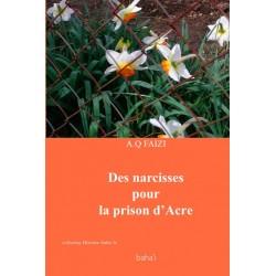 FAIZI A.Q. Des narcisses pour la prison d'Acre