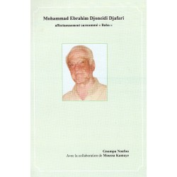Mohammad Ebrahim Djoneidi Djafari