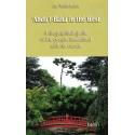 Lot une unité de 'Abdu'l-Bahá in France ACHETE , une unité de 'Abdu'l-Bahá in the West GRATUITE